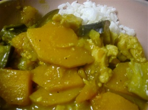 Eggplant Butternut Squash Chicken Curry 2