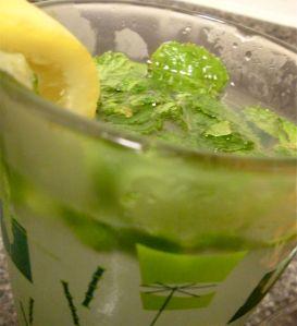 Lemon Lime Mojito