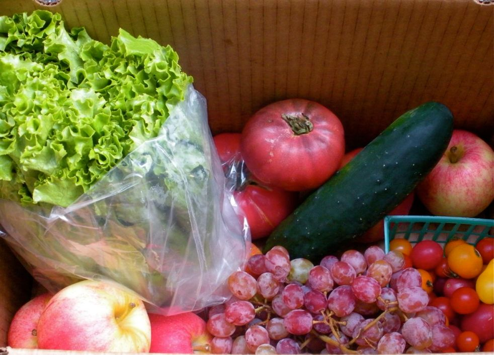 Farm Fresh vegetables-Duo Dishes