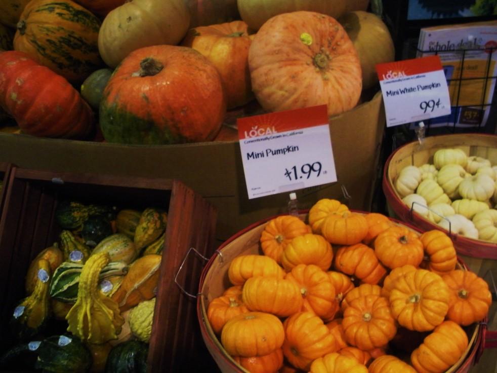 Pumpkin assortment 2-Duo Dishes