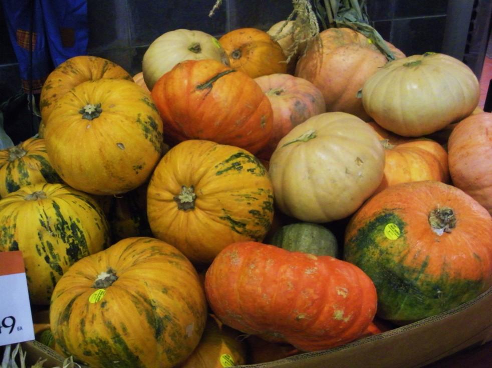 Pumpkin assortment 3-Duo Dishes