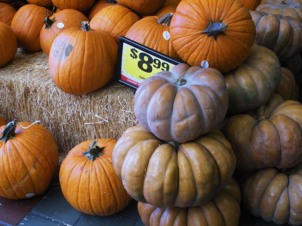 Pumpkins assortment 1-Duo Dishes