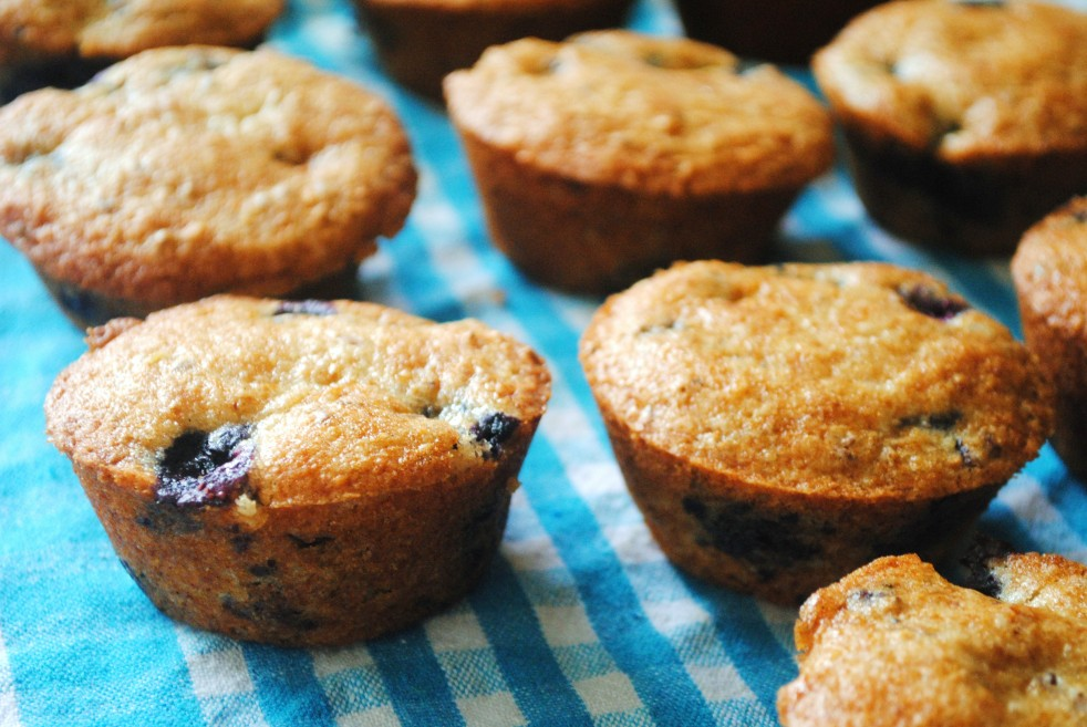Blueberry Ginger Muffins 2-The Duo Dishes